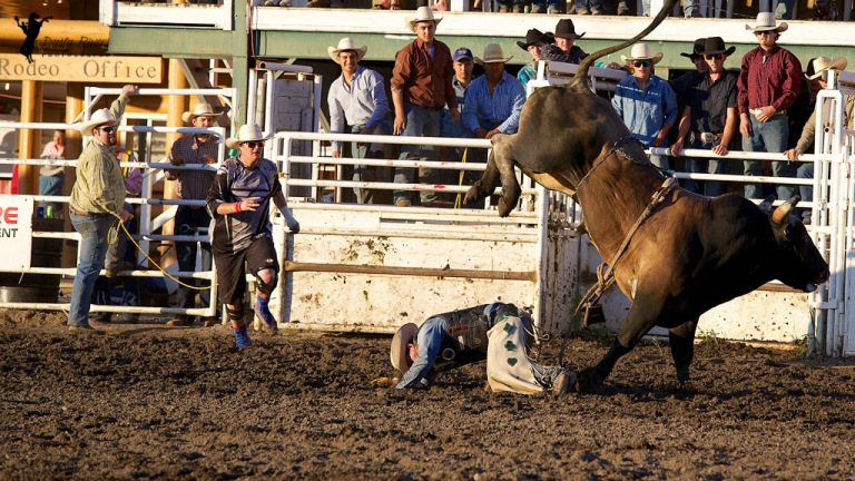 Sundre Rodeo grounds Bull Riding 5 Sundre Alberta dustyriversphotography