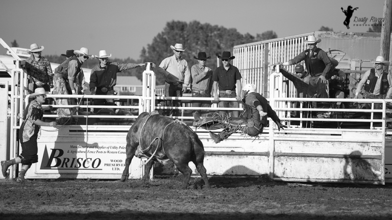 Sundre Rodeo grounds Bull Riding Sundre Alberta dustyriversphotography