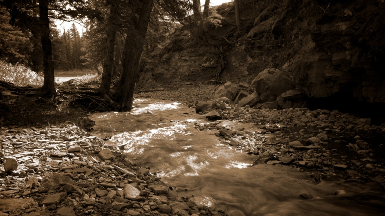 mountain  creek, sepia, Canmore, Alberta, Canada, dustyriversphotography