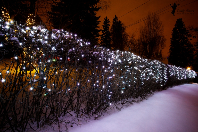Merry Christmas, Night photo, Christmas lights, Calgary, yyc, Alberta, Canada, dustyriversphotography