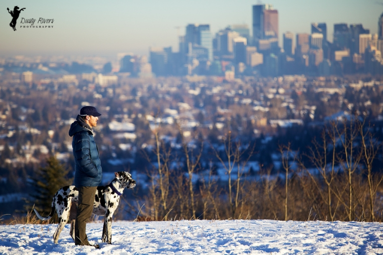 A man and his dog, Edworthy Park, city view, great dane, harlequin great dane, winter, downtown Calgary, Calgary, yyc, Alberta, Canada, dustyriversphotography