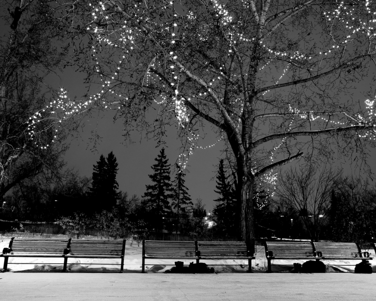 Princes Island park, black and white, park benches, night shot, winter, downtown Calgary, cityscape, Calgary, yyc, Alberta, Canada, dustyriversphotography