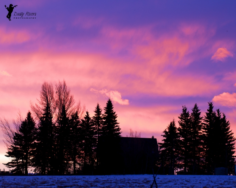 Winter sunrise on the praities, sunrise, winter, prairies, Highway 8, Calgary, yyc, Alberta, Canada, dustyriversphotography