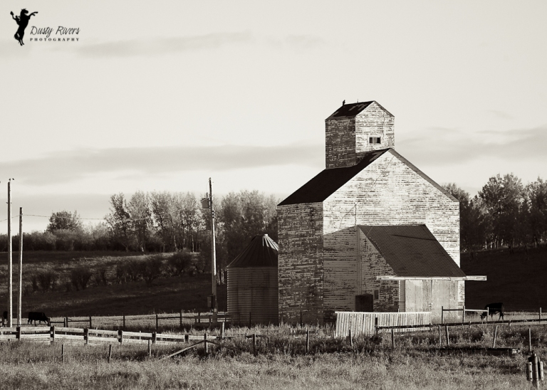 Ranch builcing, Southern Alberta, black and white, canon, Calgary, yyc, Alberta, Canada, dustyriversphotography