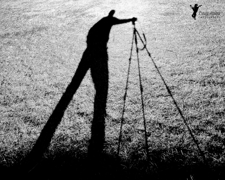 Shadowland, Calgary, yyc, Alberta, Canada, dustyriversphotography