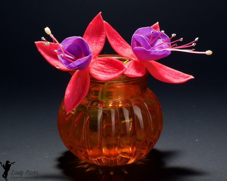 Flowers in a Vase, purple and red flowers, orange vase, Calgary, Alberta, Canada, Dusty Rivers Photography, dustyriversphotography.com,