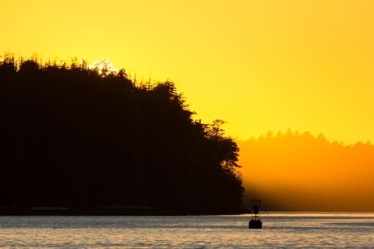 tofino-bc-tonquin-beach-sunset 2-gorgeous-dusty-rivers-photography-dustyriversphotography-com