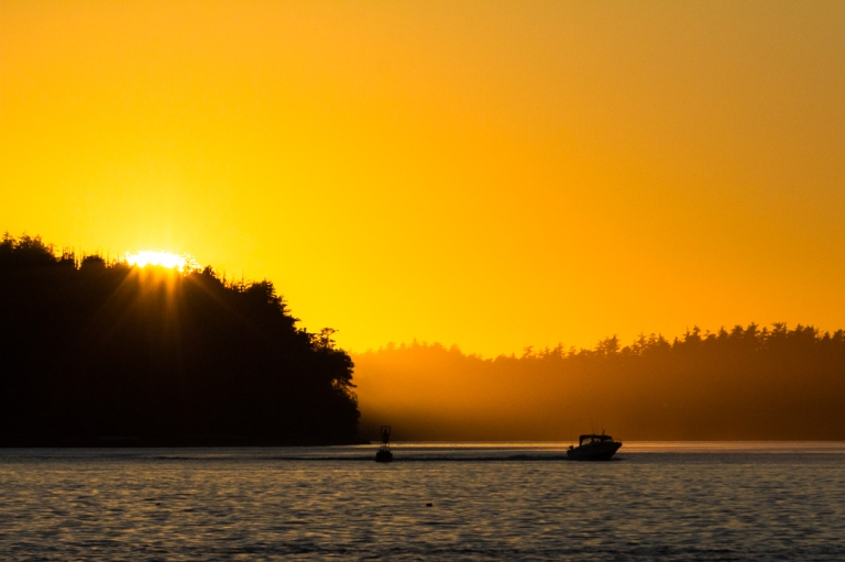 tofino-bc-tonquin-beach-sunset-gorgeous-dusty-rivers-photography-dustyriversphotography-com