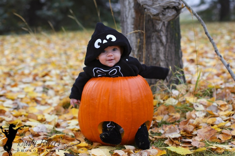 Baby in a pumpkin, Fall, Fish Creek Park, Calgary, YYC, Dusty rivers Photography, dustyriversphotography.com